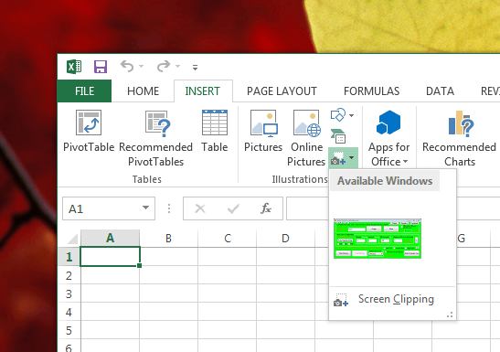 Screenshot in Excel File